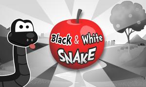 black-and-white-snake